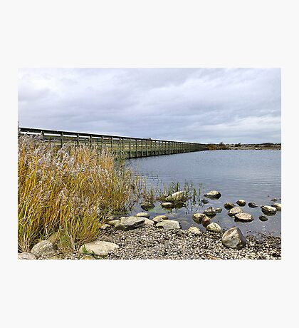 Fleetwood Nature Reserve. Photographic Print