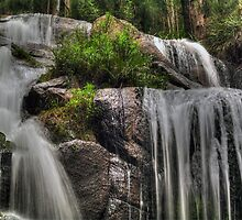 Toorongo Falls. by Bette Devine