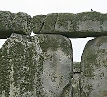 Up close and personal with Stonehenge by hans p olsen