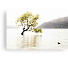 The Wanaka Tree in the Lake Canvas Print