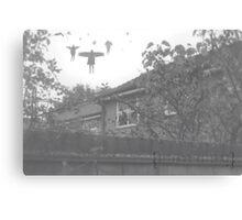 25/365 Canvas Print