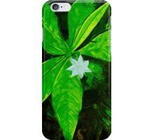 Star Flower Abstract Impressionist iPhone Case/Skin