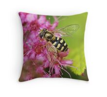 Hoverfly . 5 Throw Pillow