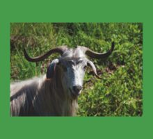 Portrait of A Horned Goat Grazing One Piece - Short Sleeve