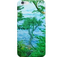 Spirit Tree Lake Superior Minnesota iPhone Case/Skin