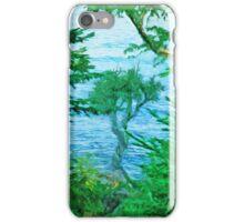 Spirit Tree Lake Superior Minnesota iPhone Case/Skin