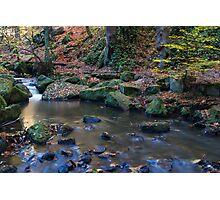 Autumn on Wyming Brook IV Photographic Print