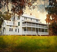 Thursby House Blue Springs by designingjudy