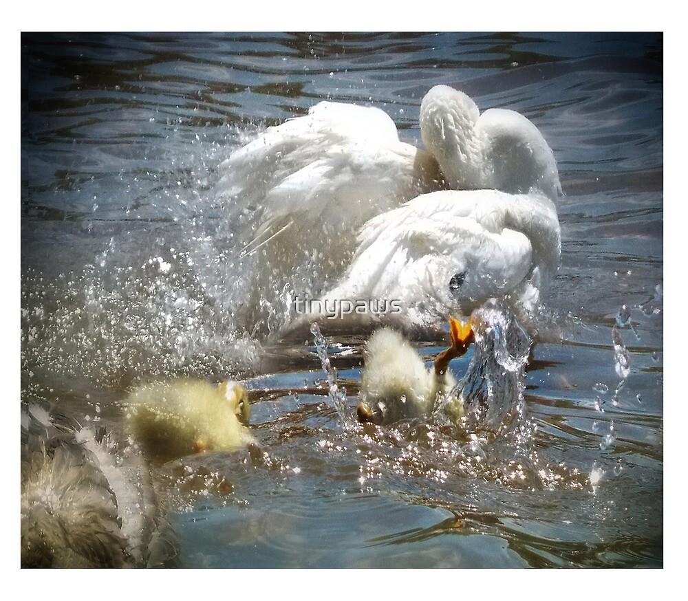 Splish splash all taking a bath by tinypaws