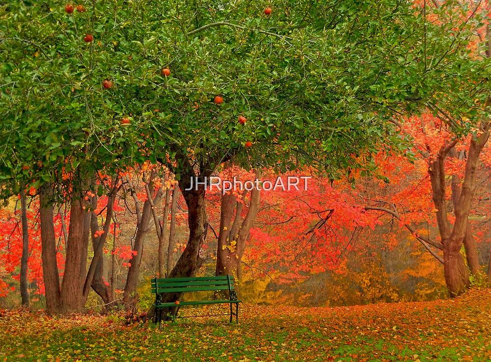 Under The Apple Tree by JHRphotoART