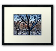 Beyond the Branches Framed Print