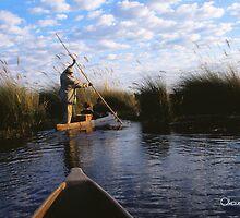 Okavango Delta by KurtKeller
