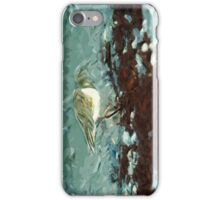 Shorebird Ruddy Turnstone Abstract Impressionist iPhone Case/Skin