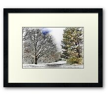 Snowy in Western Pennsylvania Framed Print