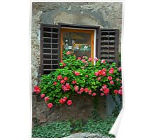 Shutters And Geraniums Poster