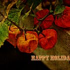 Happy Holidays Greeting - Chinese Lantern Plant by MotherNature