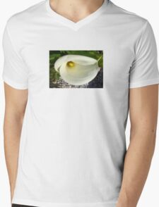 Overhead Shot of A Cream Calla Lily In Soft Focus T-Shirt