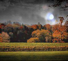 Autumn Twilight by naturelover
