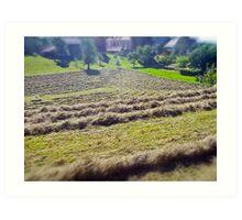 Hay 'amphitheater' Art Print
