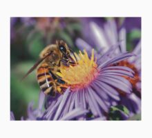 Honey Bee On Purple Flower Baby Tee