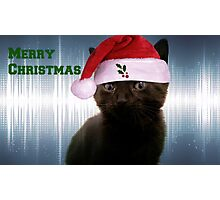 Merry Christmas Kitten Photographic Print