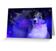 Sheltie Dream Greeting Card
