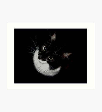 Tux Kitty Art Print