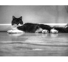 Contemplative Tux Photographic Print