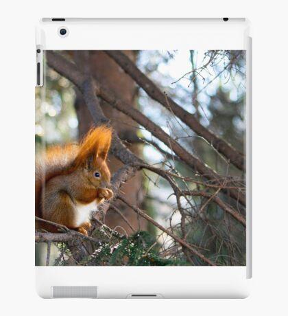 Lie in wait iPad Case/Skin