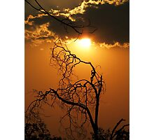 African Sunset- Zambia Photographic Print