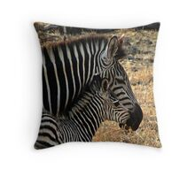 Zebra - Zambia Throw Pillow