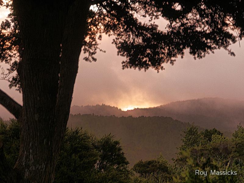 Winter Sunset........! by Roy  Massicks