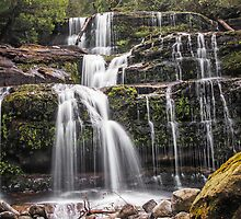 Liffey Falls -  Northern Tasmania by TonyCrehan