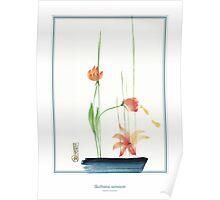 Ikebana 01 Poster