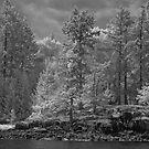 salt spring island by jackson photografix