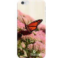 Butterfly - Phone Case iPhone Case/Skin