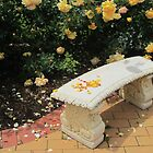 Rosy Bench by v-something