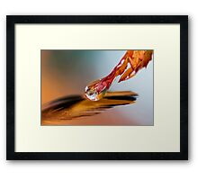 Elixir of Faith Framed Print