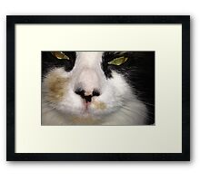 Pure Mischief Framed Print