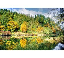 Autumn on the Tolt River Photographic Print