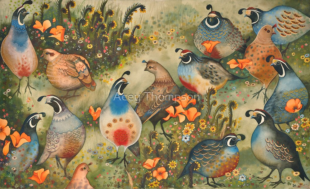 Quail & Poppies by Acey Thompson