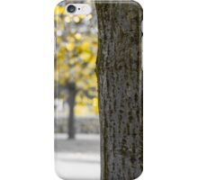Yellow trunk and leaves iPhone Case/Skin