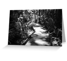Forest Walk Artistic Photograph by Shannon Sears Greeting Card