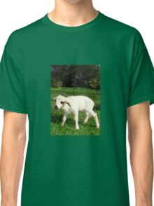 A Newborn Lamb Finding Its Feet Classic T-Shirt