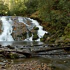 Indian Creek Falls by Carol Bailey White