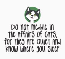 Do not meddle in the affairs of cats by e2productions