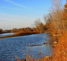 Autumn River by Veronica Schultz