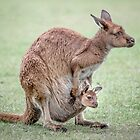 mumma and joey  by Lisa  Kenny