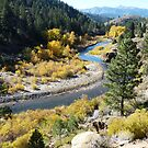 East Fork Carson River - Alpine County, CA by Rebel Kreklow
