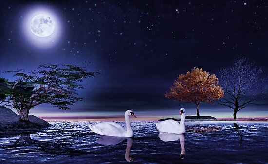 Swan lake'... by Valerie Anne Kelly